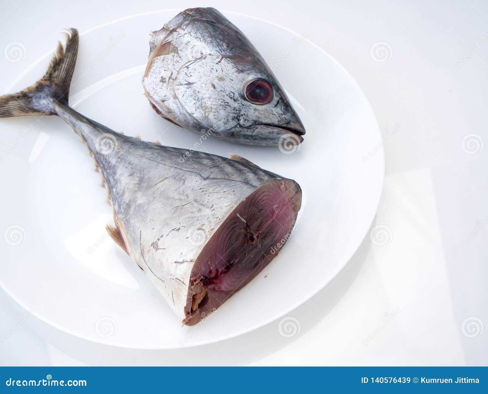 Makreelvissen ( saba fish) op witte achtergrond