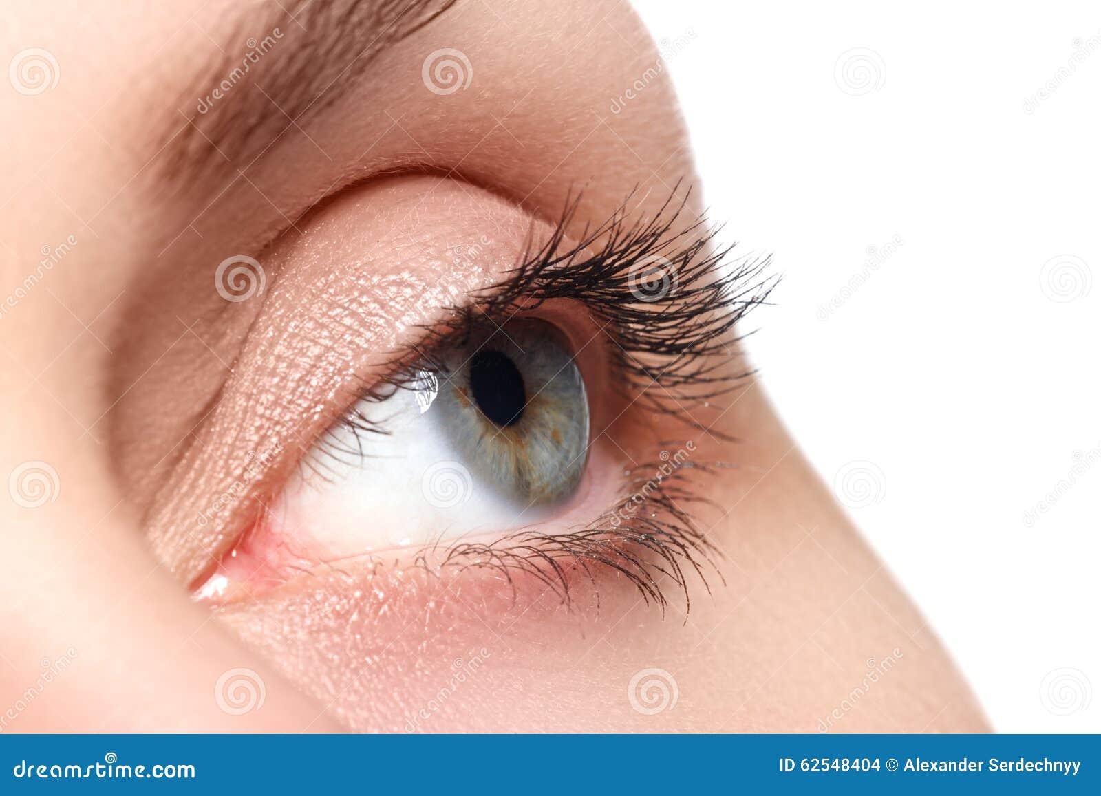 Makro- strzał kobiety piękny oko z niezwykle tęsk rzęsy Seksowny widok, zmysłowy spojrzenie Żeński oko z długimi rzęsami
