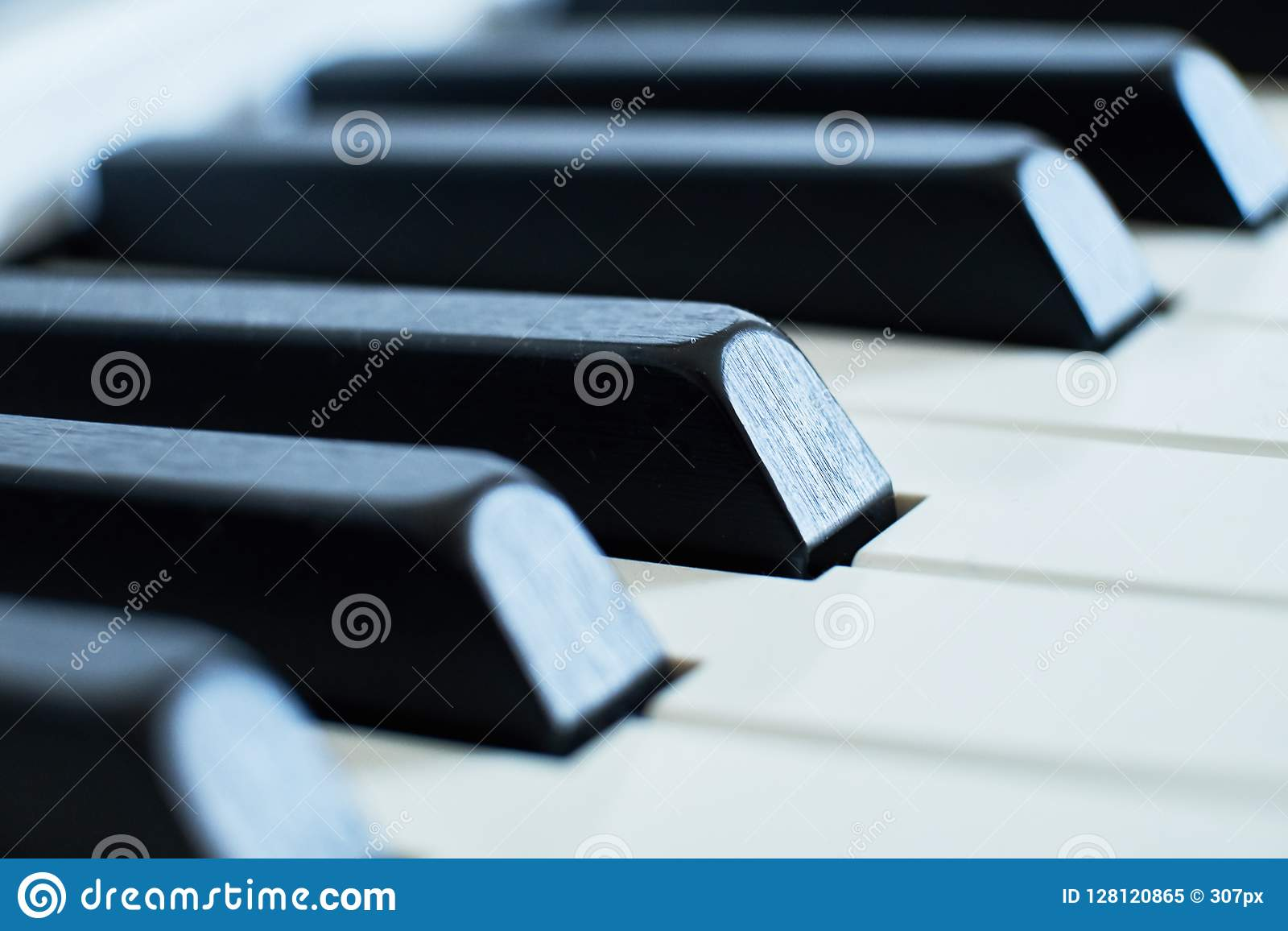 Makrocloseupskottet av pianon vit och svart stämmer i ett grunt djup av fältet