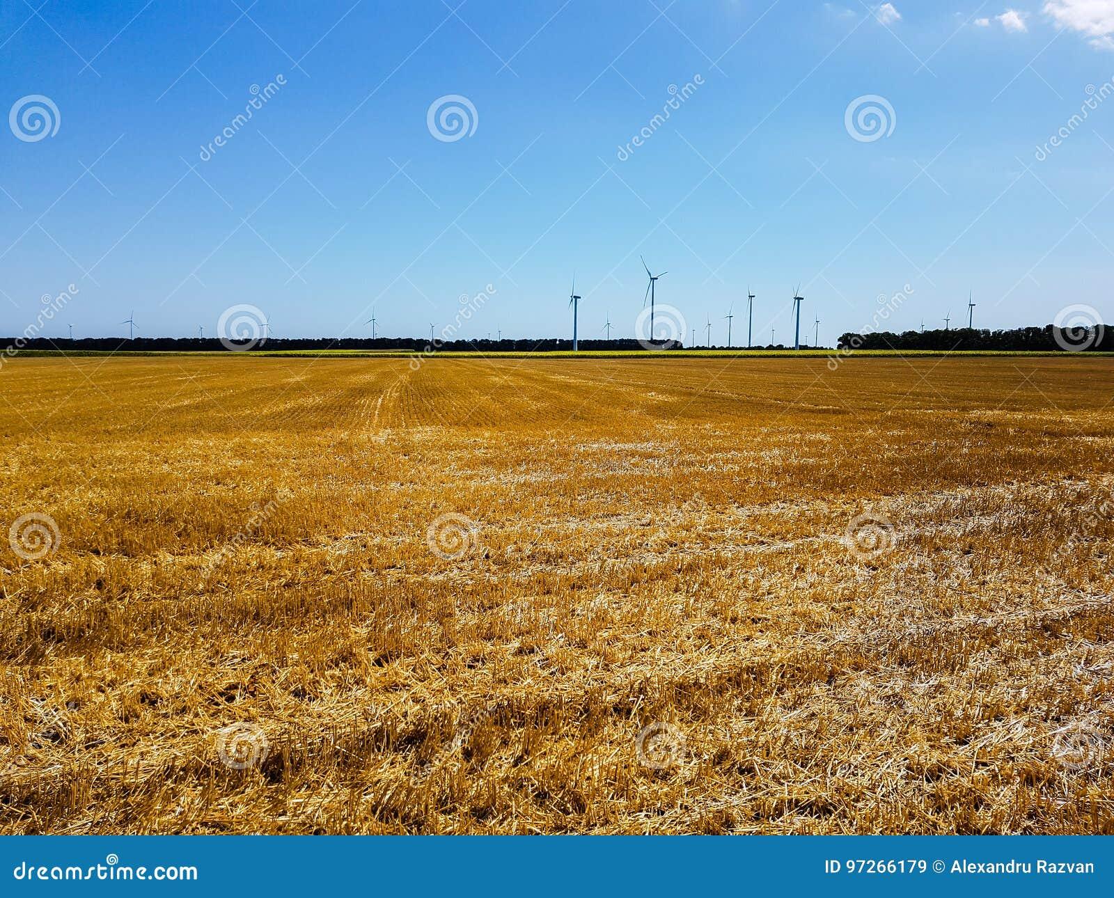 Makt av vind och det åkerbruka fältet