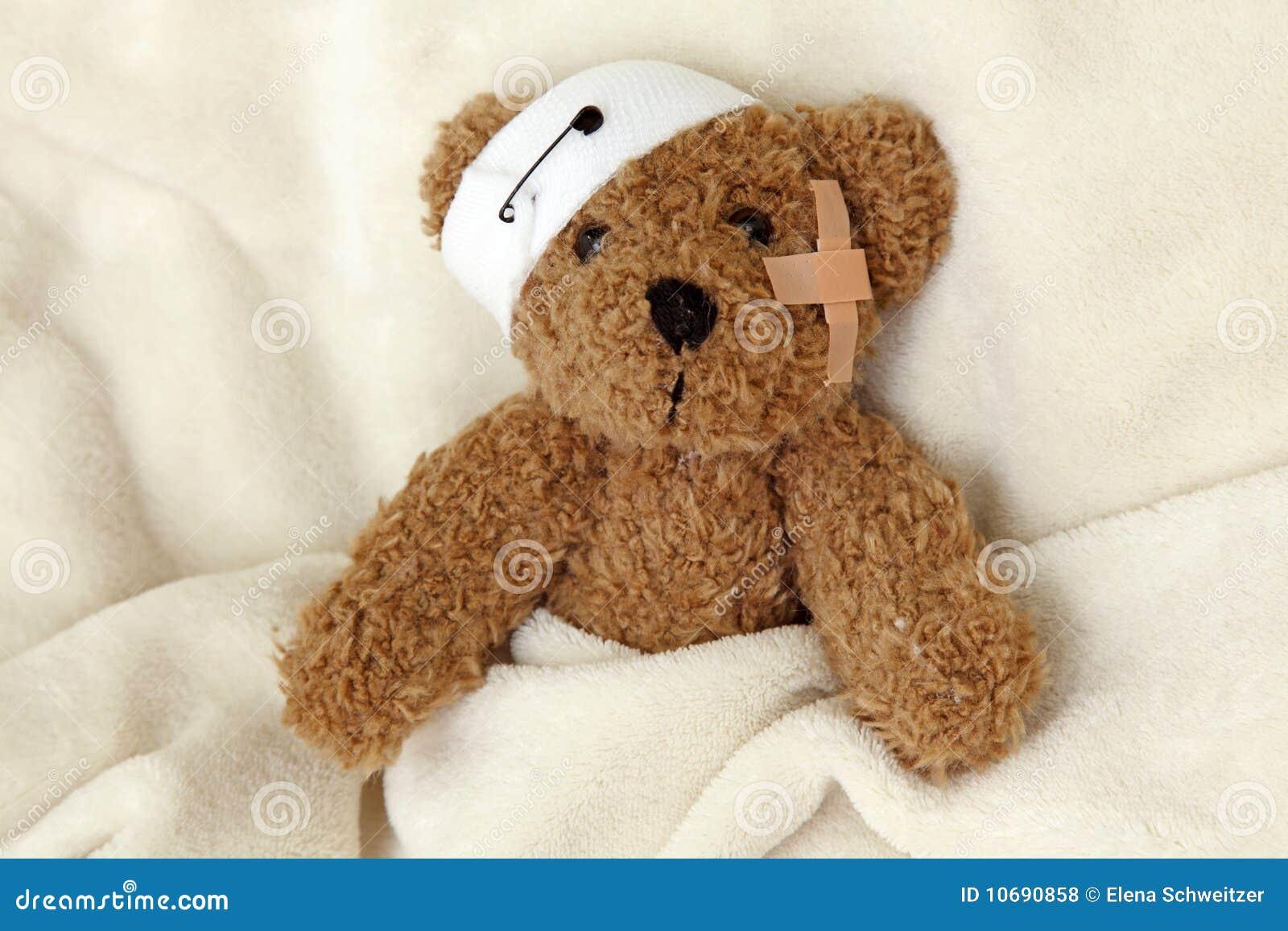Mal do urso da peluche
