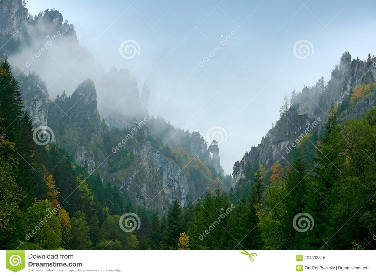 Mala Fatra mountain, Slovakia. Yellow trees. Autumn forest, many trees in hills, Fall landscape. Wood with colours tree. Rainy day