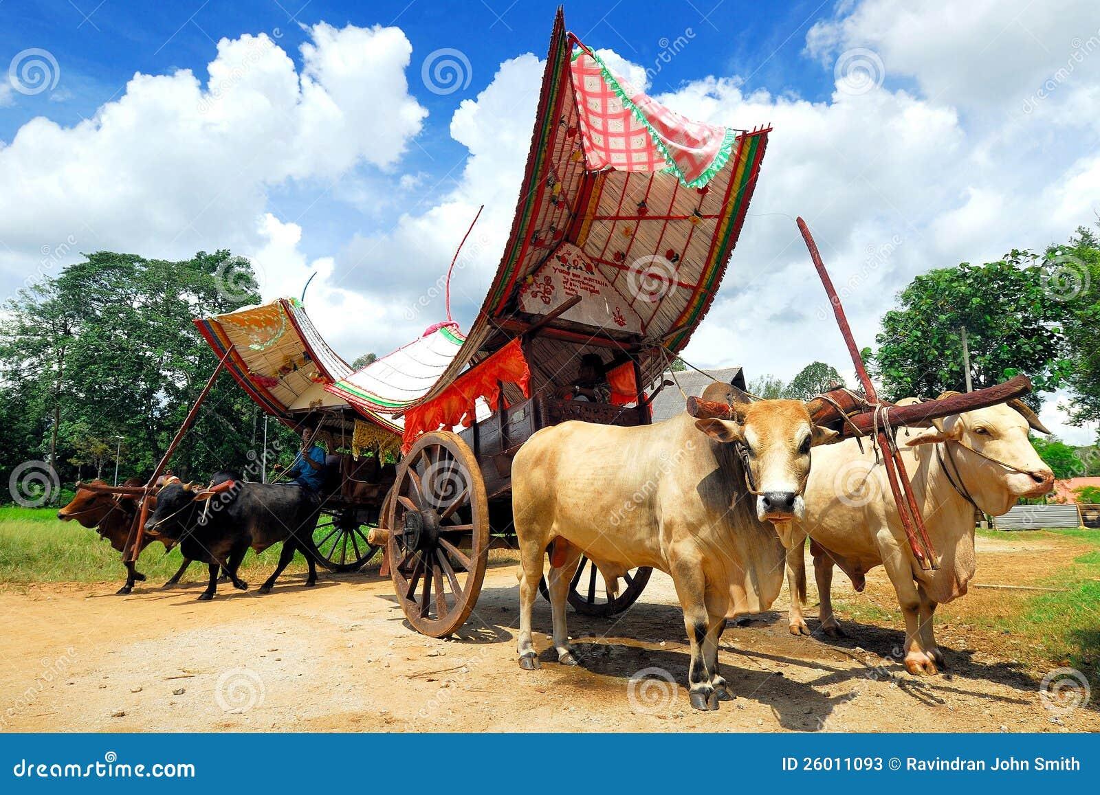 Cow Cart Clipart Malacca Bullock Cart Stock