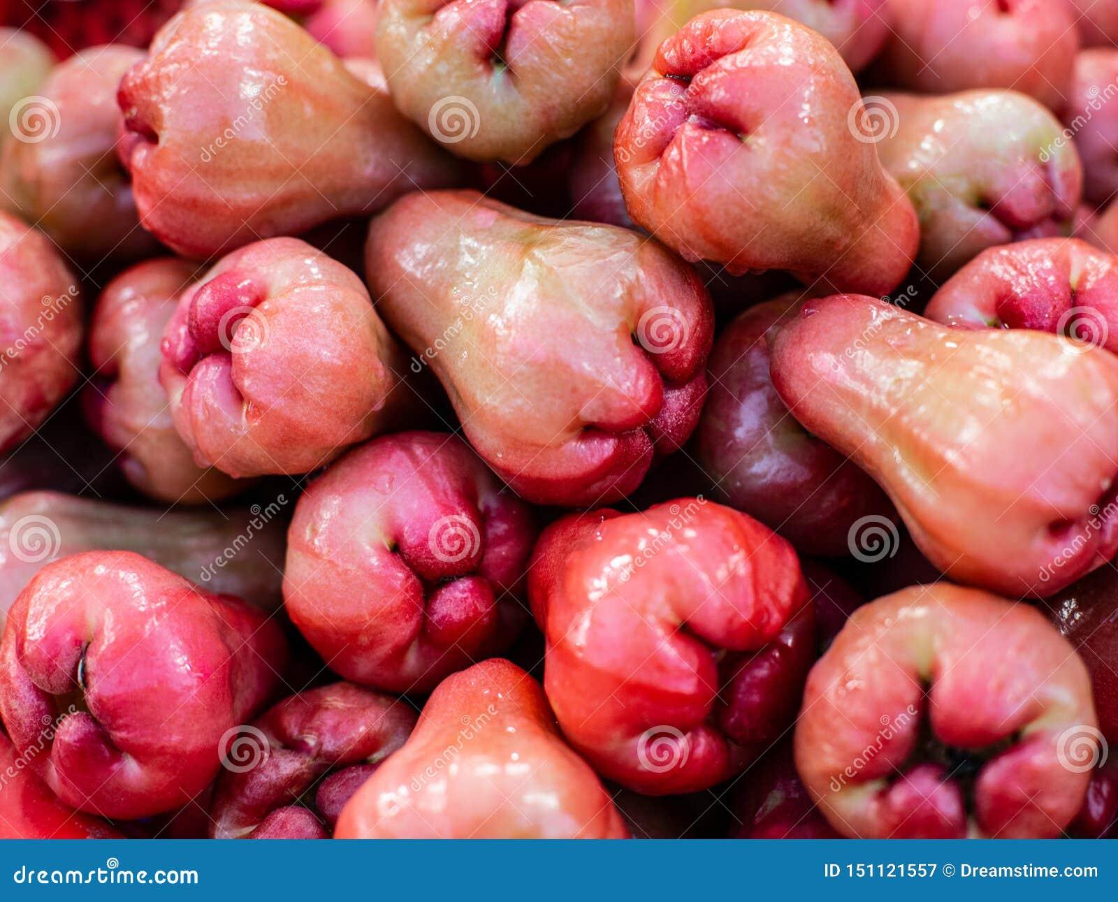 Malajiska rosa äpple Exotiska frukter, bästa sikt