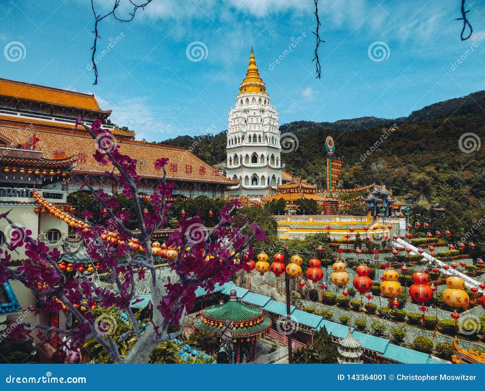 Malaysia - blommor och tempel i Penang