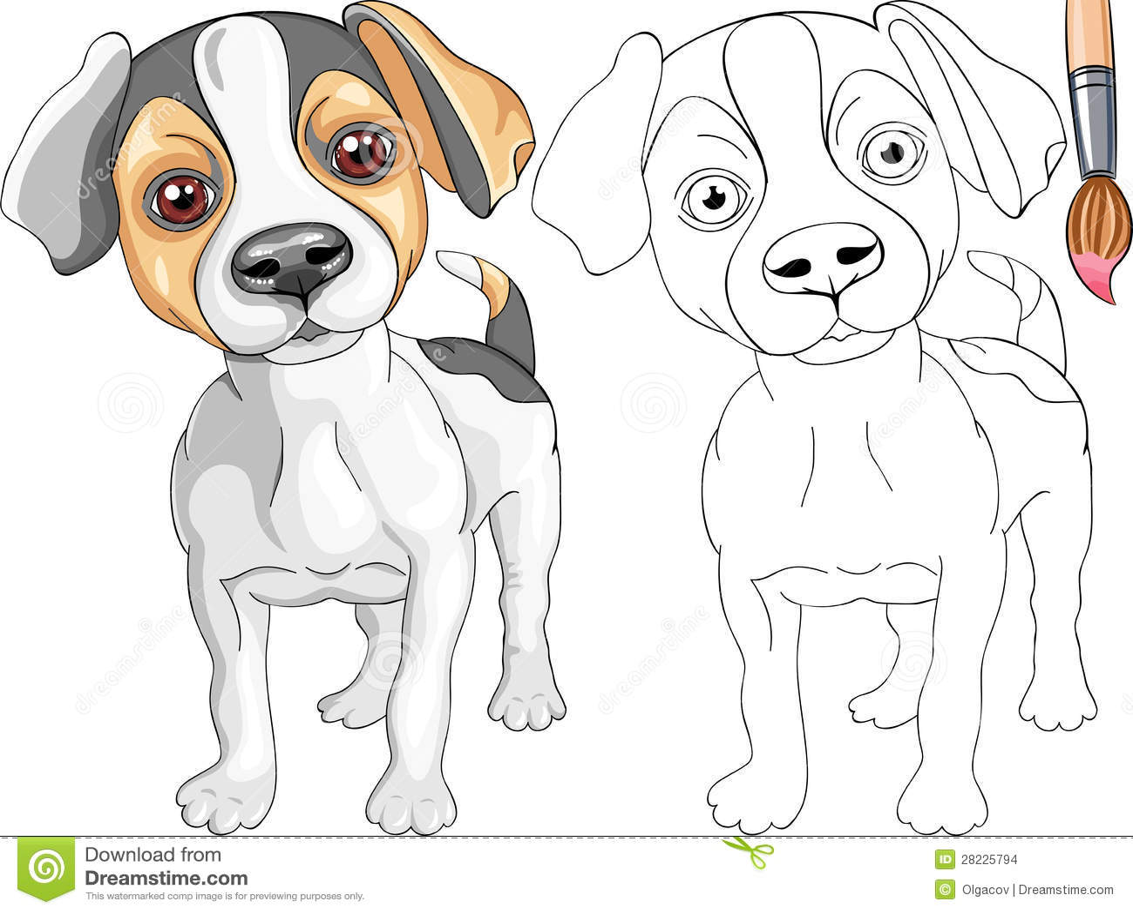 Malbuch Von Jack Russell Terrier Vektor Abbildung Illustration Von Jack Russell 28225794