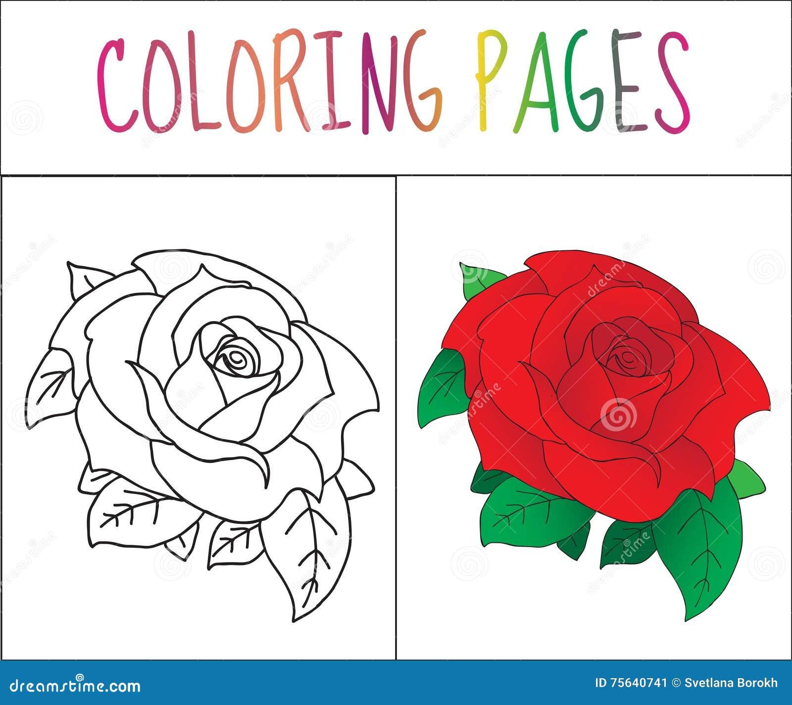 Malbuchseite, Rose Skizzen- und Farbversion Farbton für Kinder Auch im corel abgehobenen Betrag