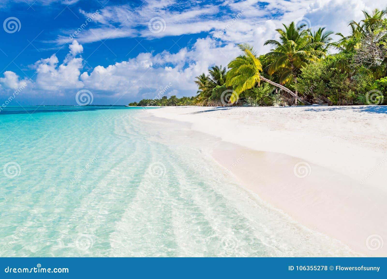 Maldives Beach Landscape For Background Or Wallpaper Design