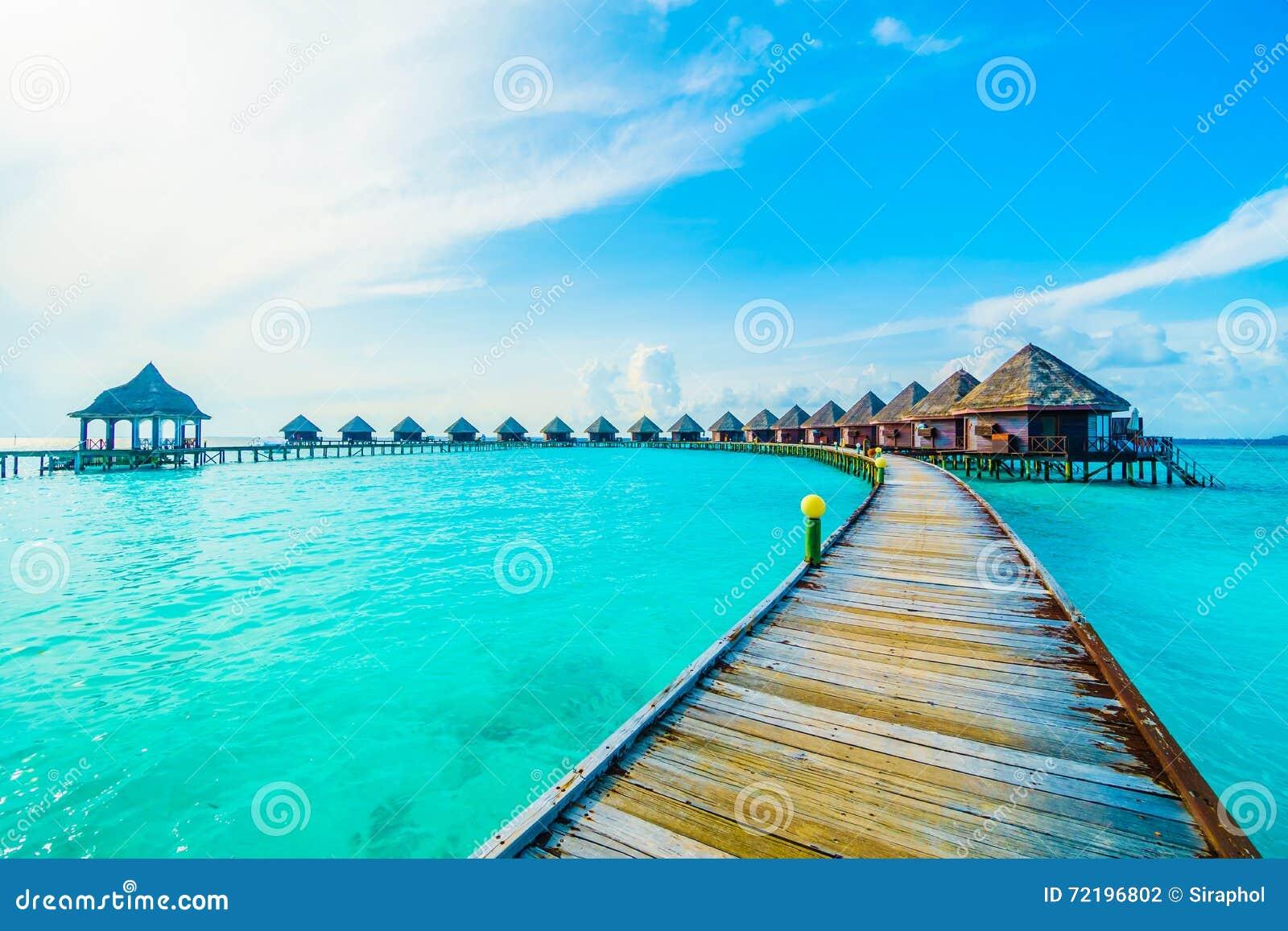Maldives Island Stock Photo Image Of Hotel Tree Ocean