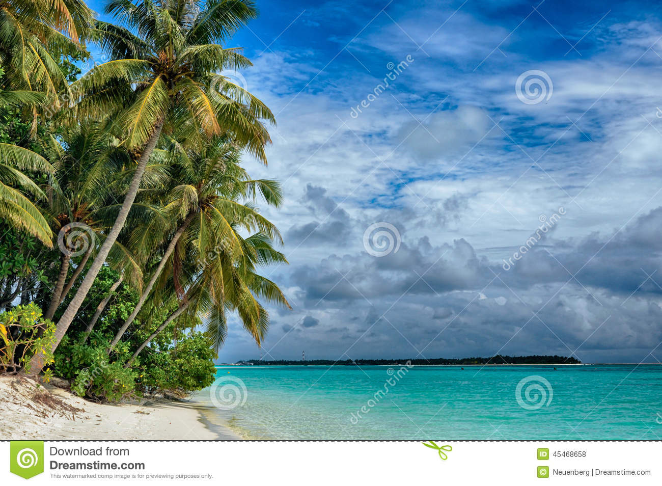 ... In The Ocean, Beach And Рalm Trees Stock Photo - Image: 45468658