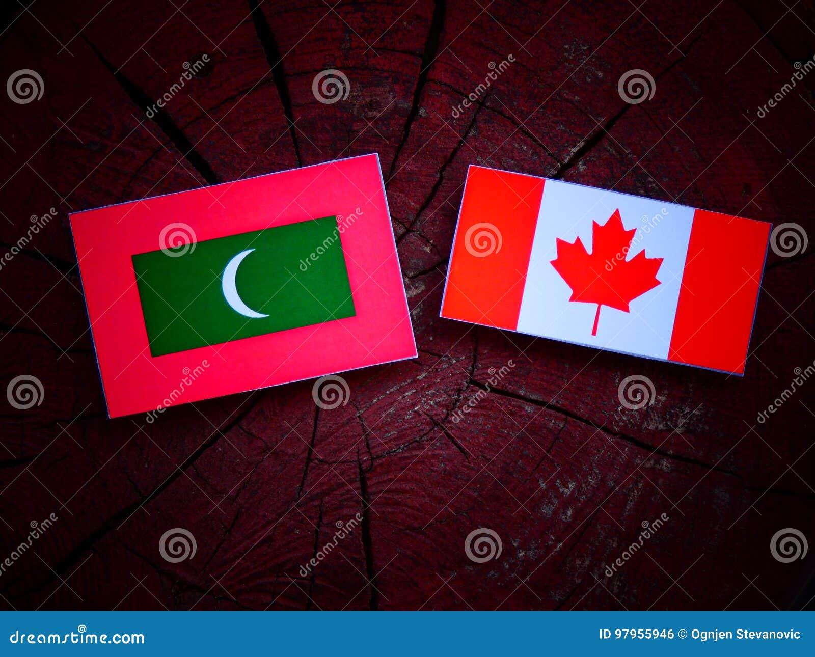 Maldives zaznaczają z kanadyjczyk flaga na drzewnym fiszorku odizolowywającym