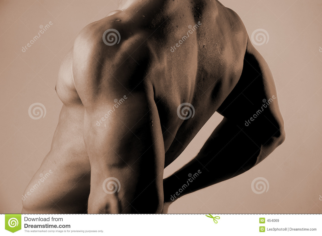 Download Male back stock image. Image of chiropractic, workout, muscle - 454069