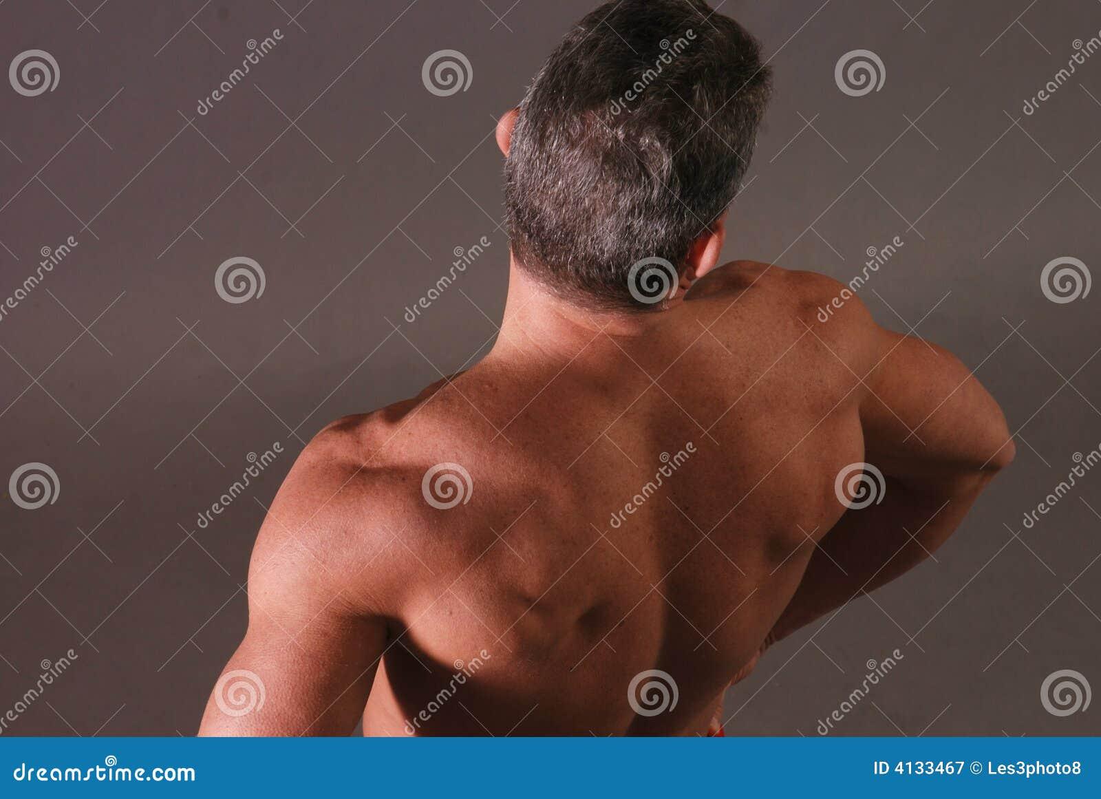 【僧帽筋から】背中 Part.3 【脊椎起立筋まで】YouTube動画>50本 ->画像>58枚