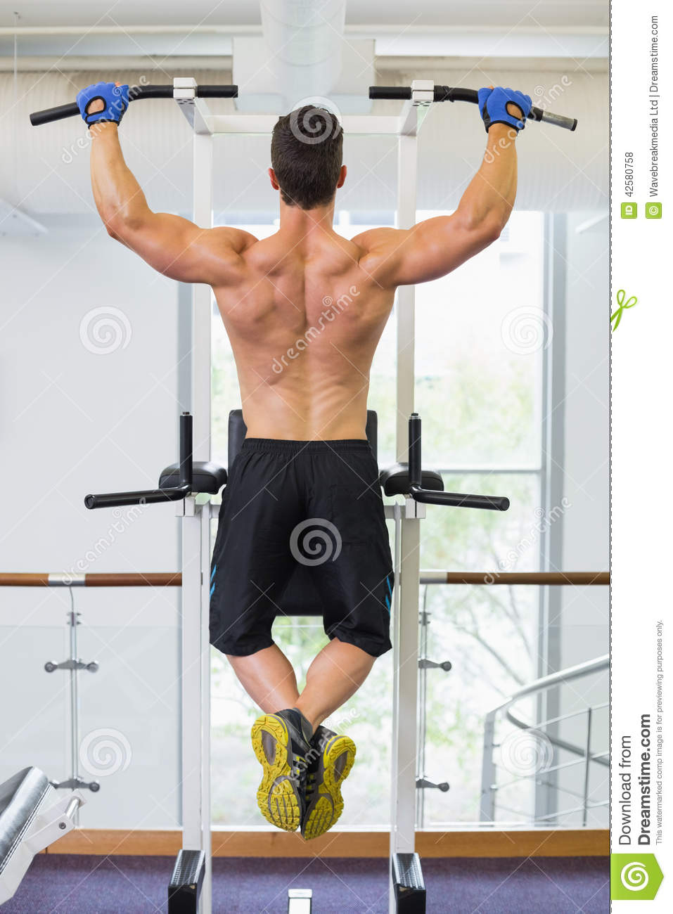 Male Body Builder Doing Pull Ups At The Gym Stock Photo