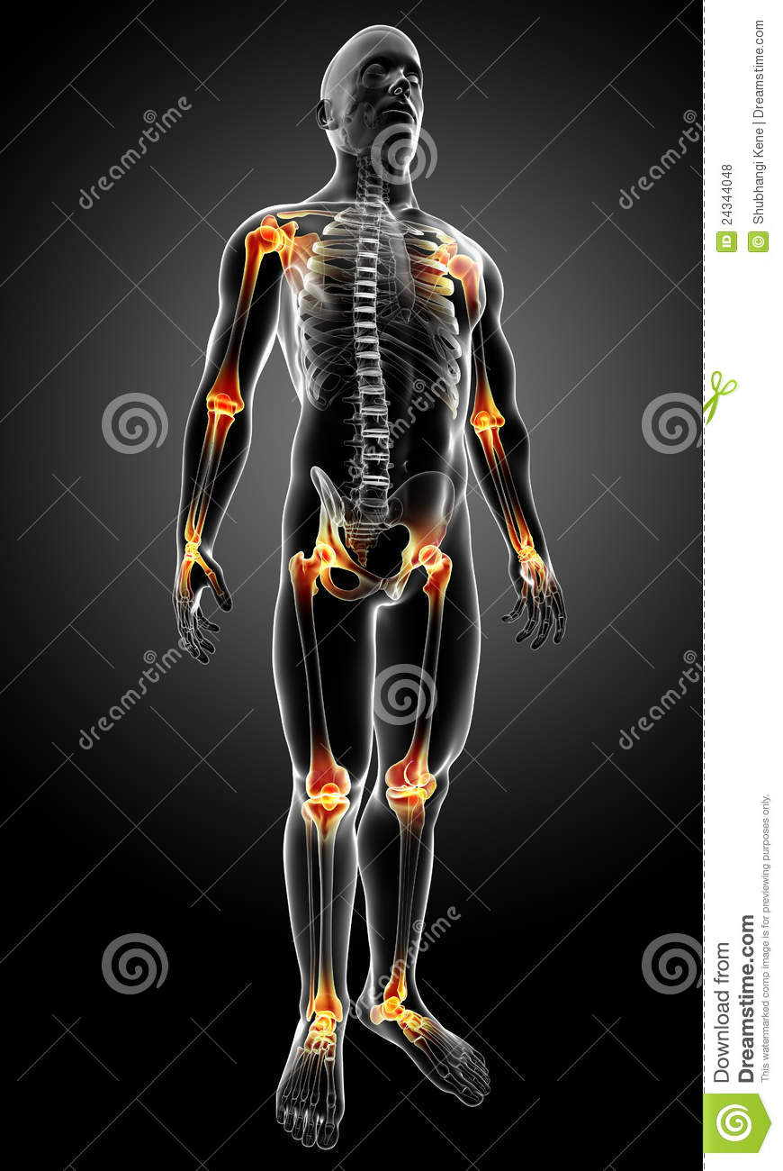 Male Body With Joint Pain Stock Illustration  Image Of