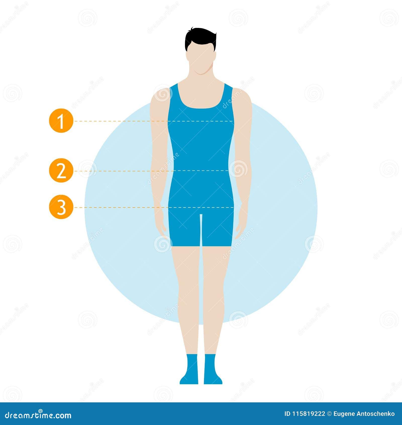 Male Body Measurement Chart Figure Of The Guy Model In Underwear Swimwear