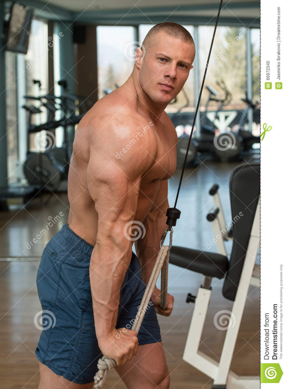 Download Male Bodybuilder Doing Heavy Weight Exercise For Triceps Stock Image