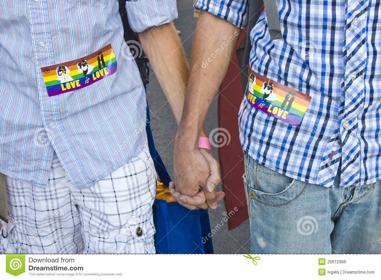 Gay men holding a pride flag