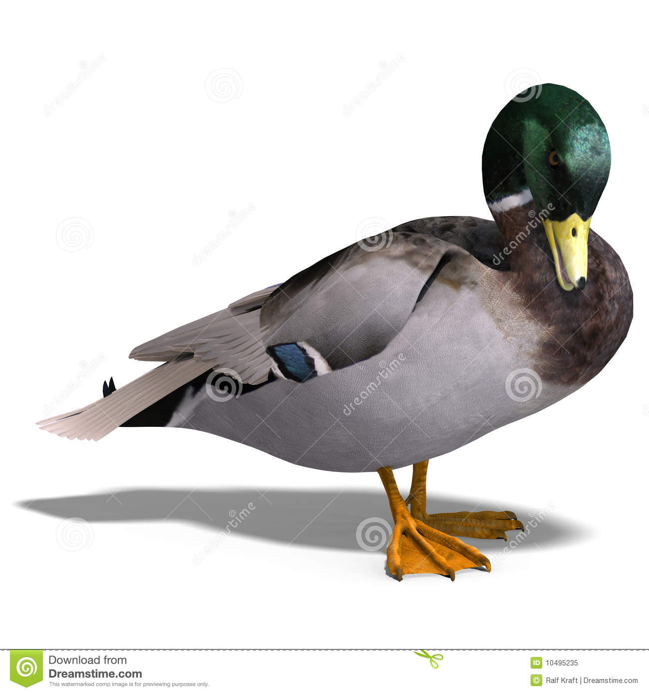 mallard guys Hey guys, i've been working on some new homemade decoys during the off season, something to keep my free time busy i started making this little guy in january when i found an.