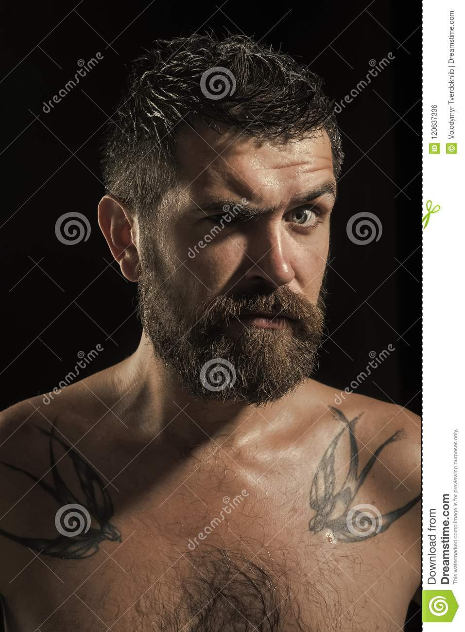 47f32f297 Male Emotions. Barber Fashion And Tattoo Beauty. Stock Photo - Image ...