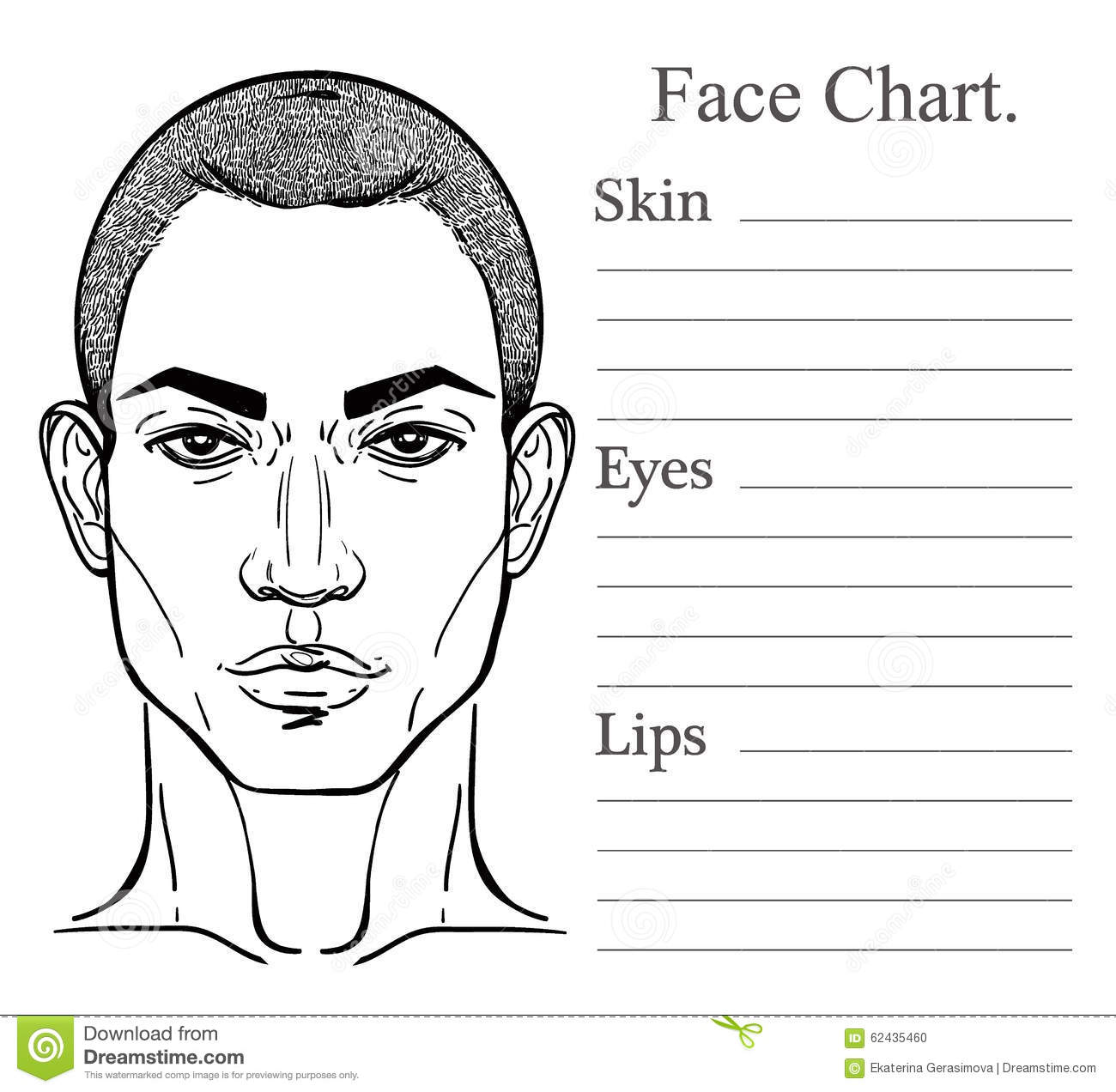 male face chart make up artist blank stock vector image