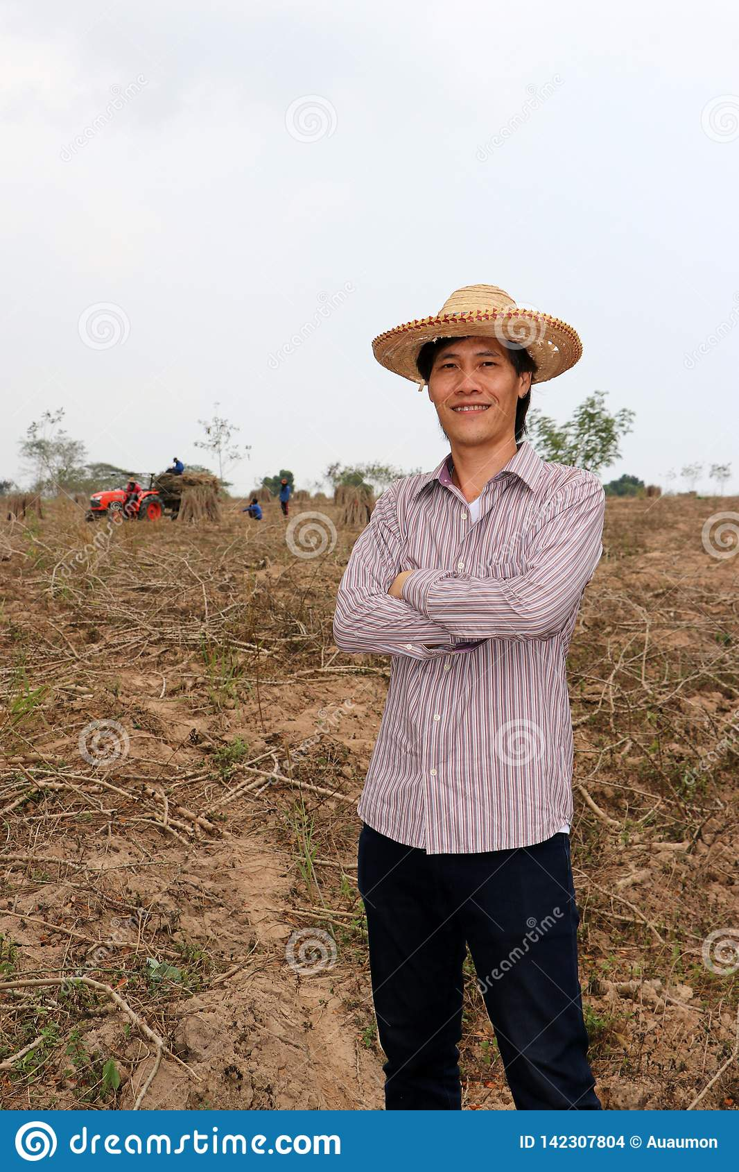 Male farmer standing and hugging chest in the cassava farm