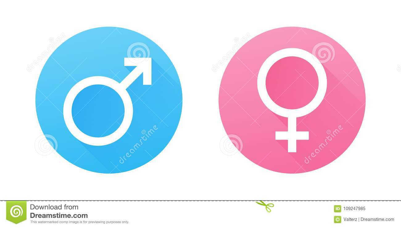 Male And Female Gender Symbols Flat Design Vector Icons Stock