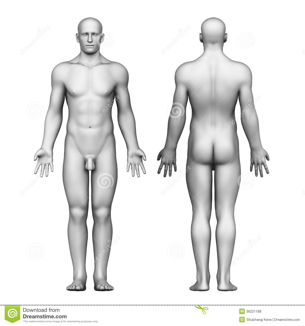 Nude male medical illustration gay the 5