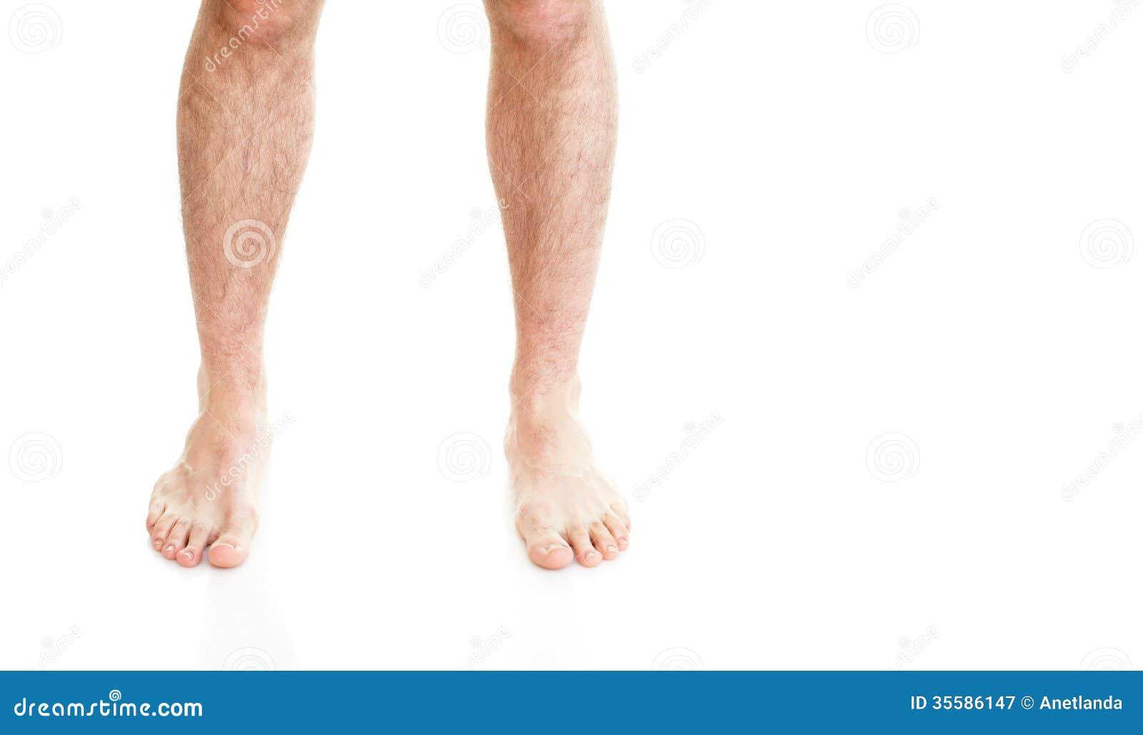 Free Hairy Legs 79