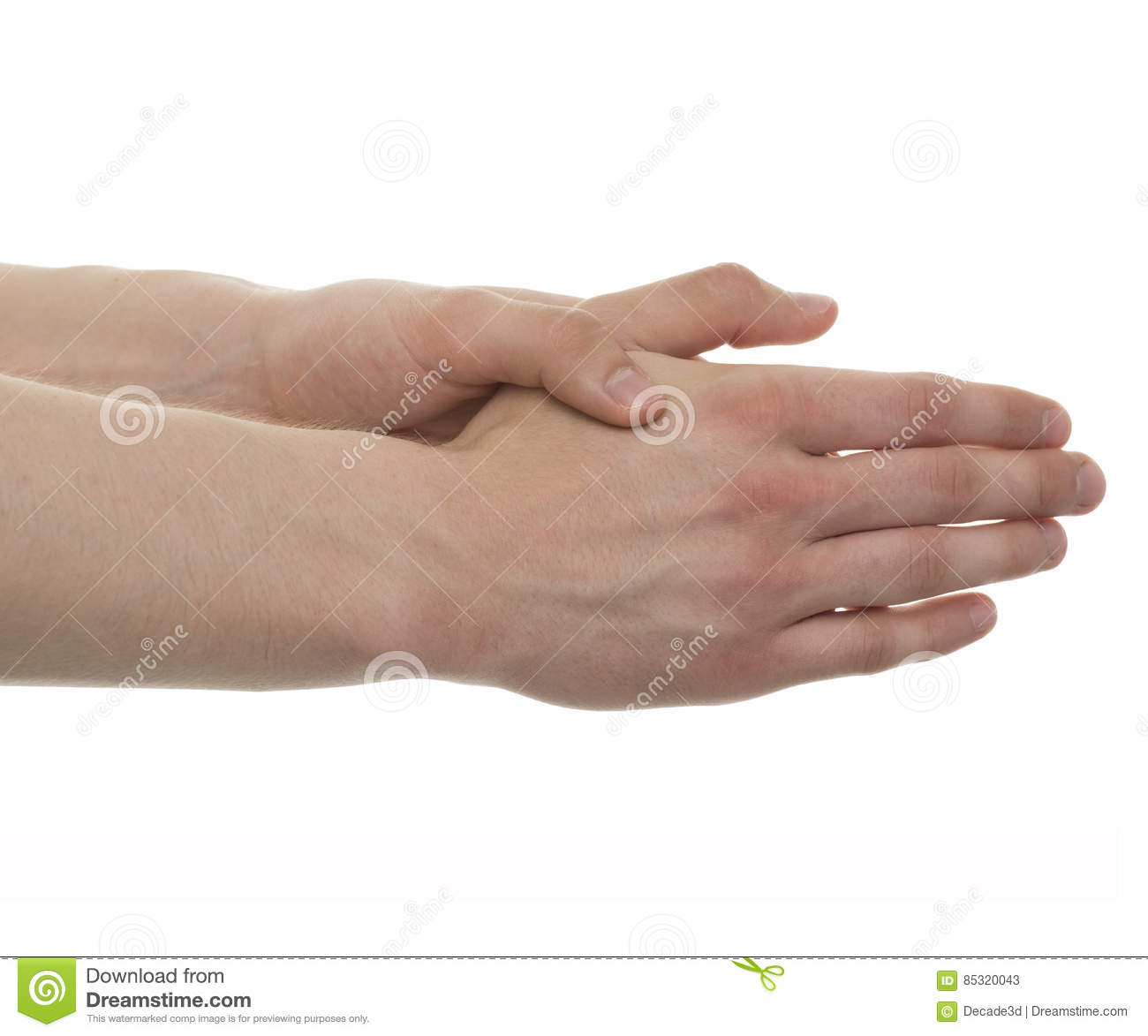 Male Hand Anatomy - Studio shot with 3D illustration isolated on