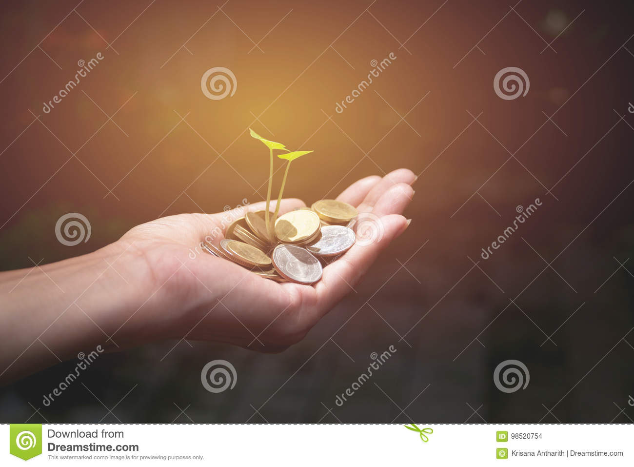 Male holding money gold coins with plant in his hand
