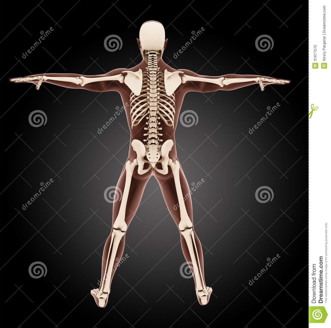Blood Skeleton Render By Richard67915 28 Images Blood Skeleton Gif By Yifan Find On Giphy