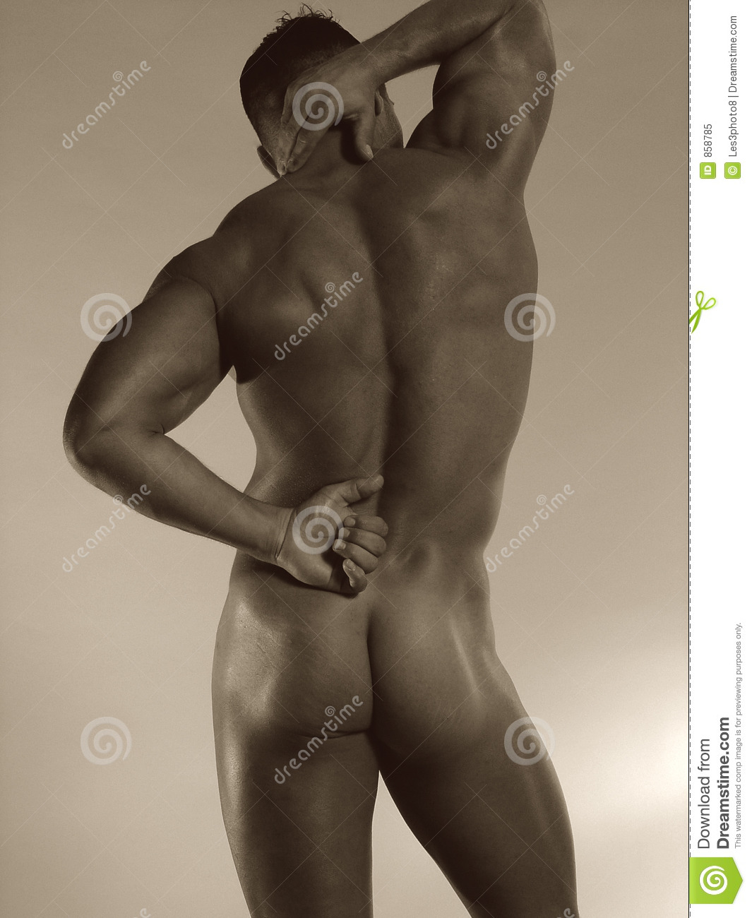 male nude rear royalty free stock photo   image 858785