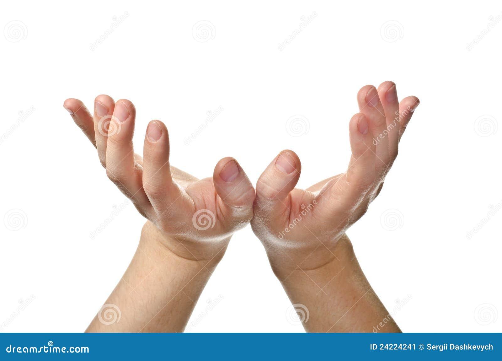 Посмотрите на свою руку и сравните