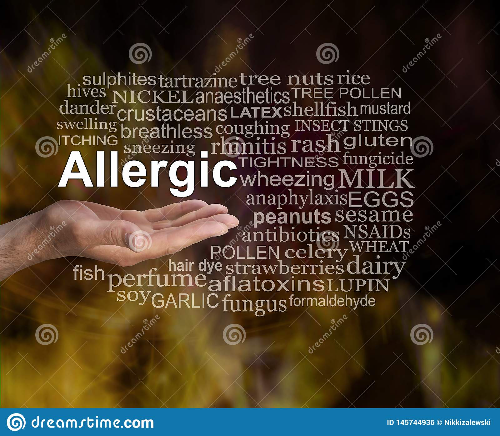 What are you Allergic to word cloud