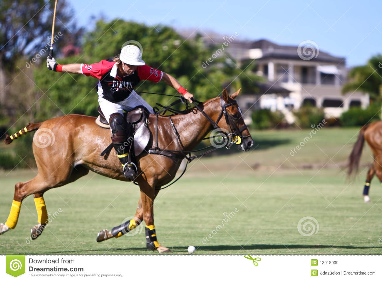 Male Polo Player Editorial Stock Image Image Of Hitting