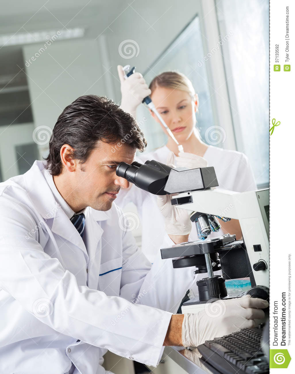 Male Scientist Using Microscope In Lab Stock Photography - Image ...