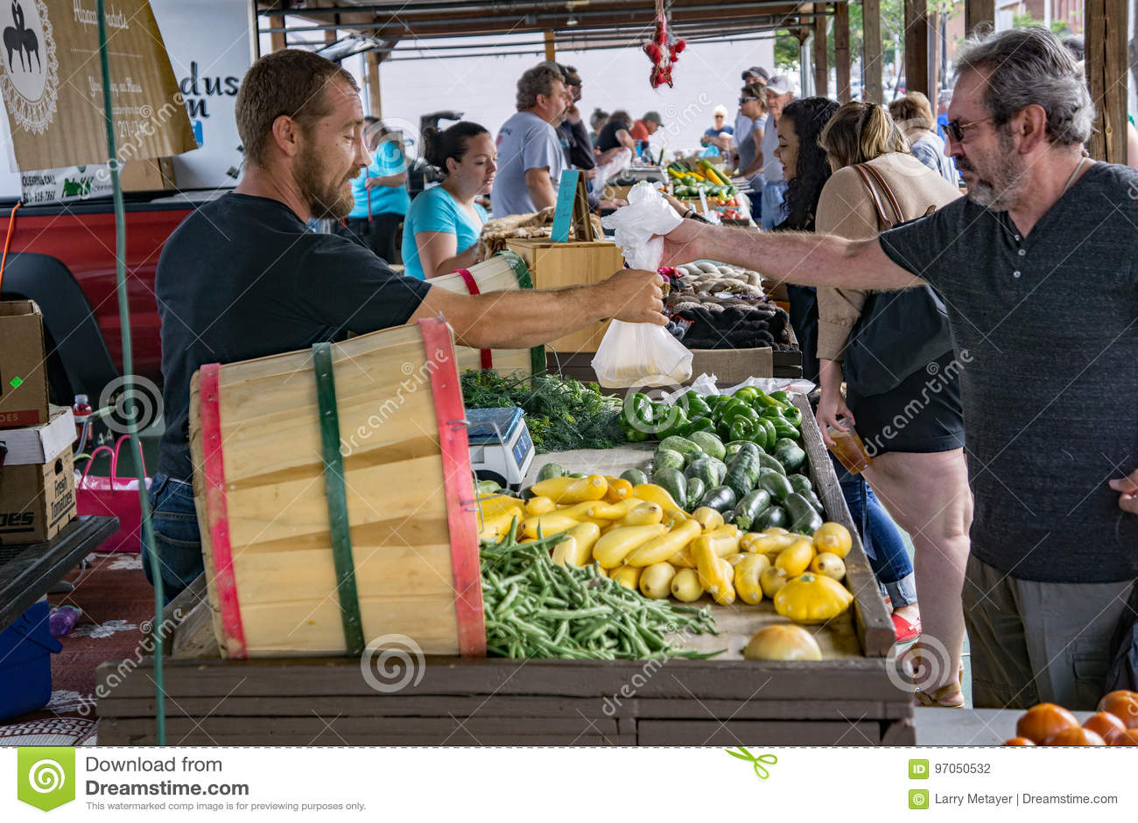 Male Shopper at the Salem Farmers Market
