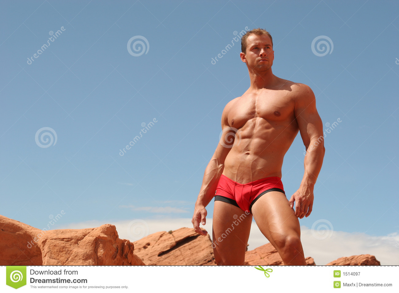 Royalty Free Stock Photography  Male Underwear Model