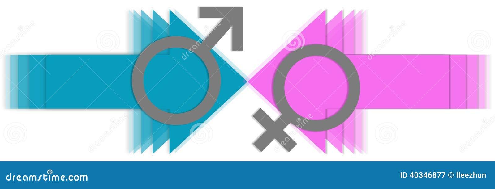 Male Vs Female Arrows Stock Illustration Illustration Of