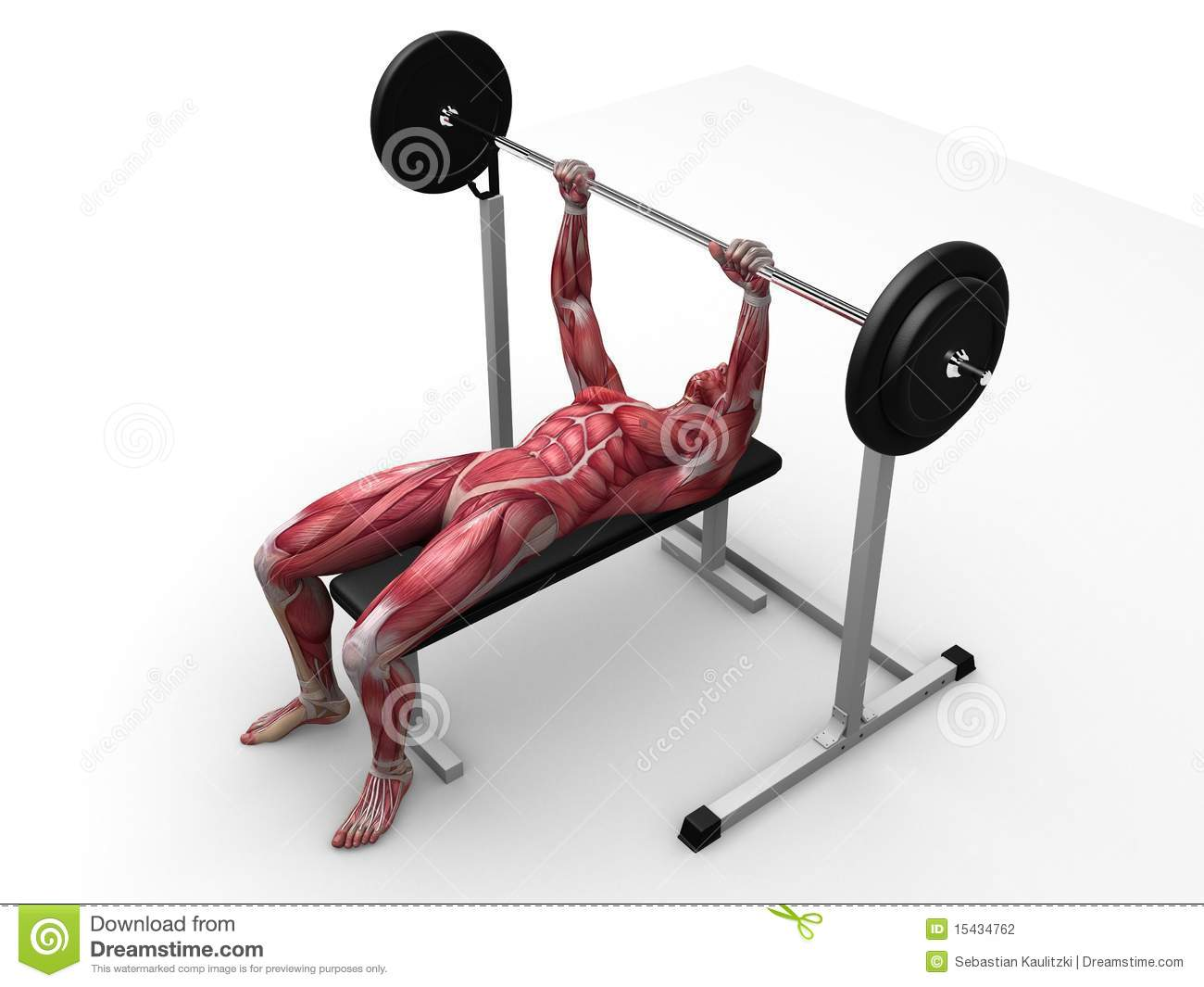 ... for bench press clip art displaying 20 images for bench press clip art