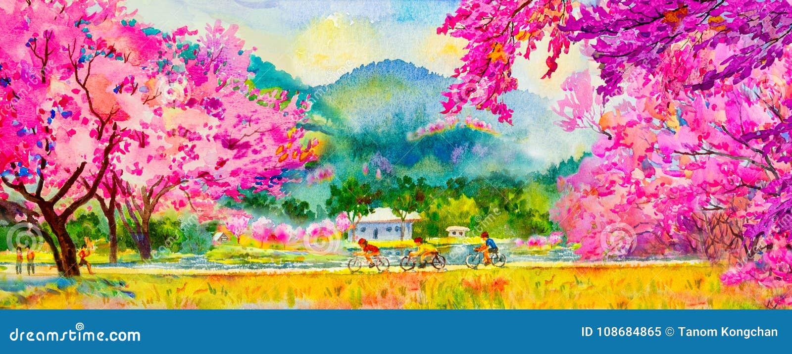 Malende rosa Farbe der wilden Himalajakirsche blüht