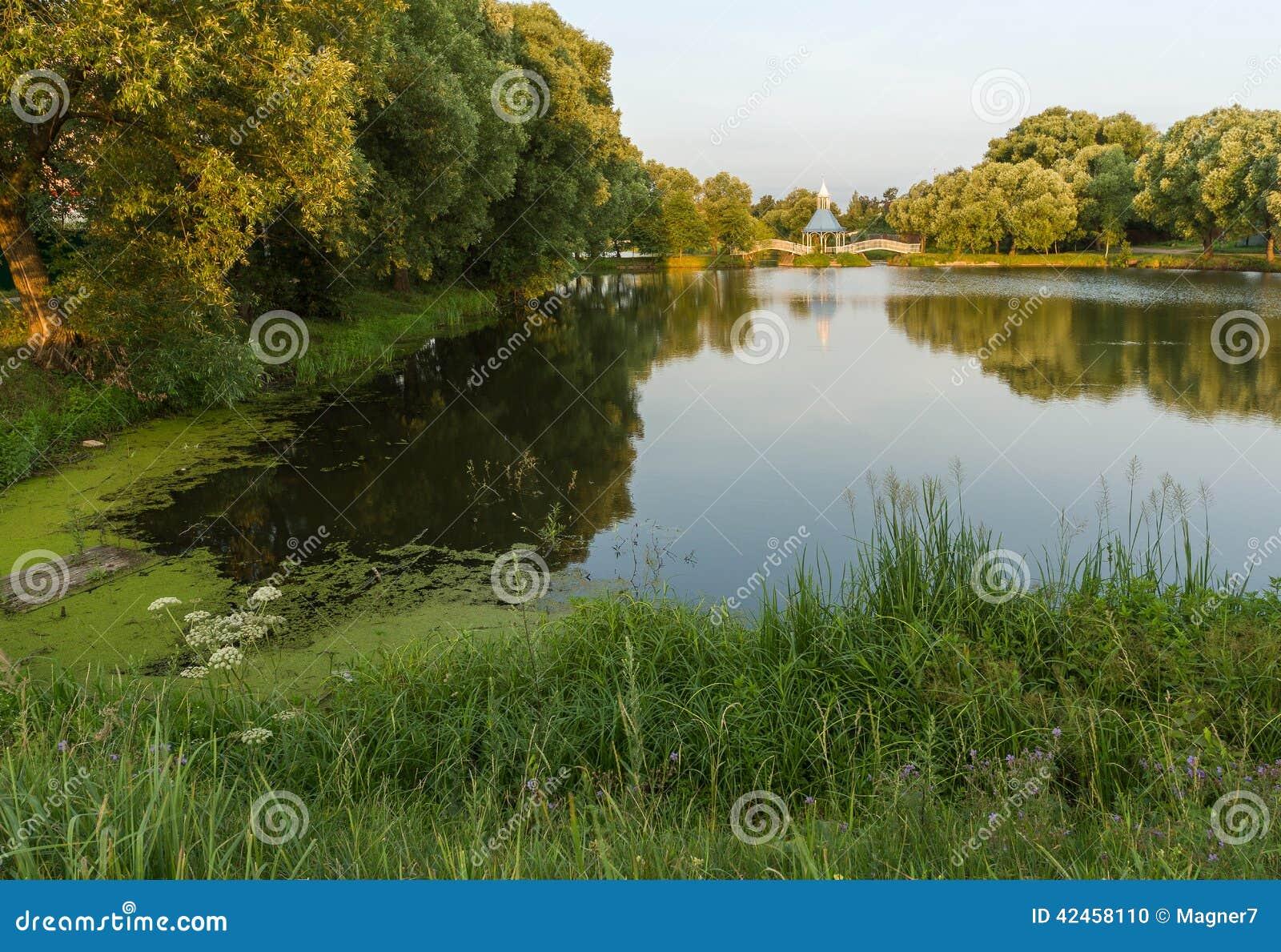 Malerische Landschaft mit Teich und einer Brücke