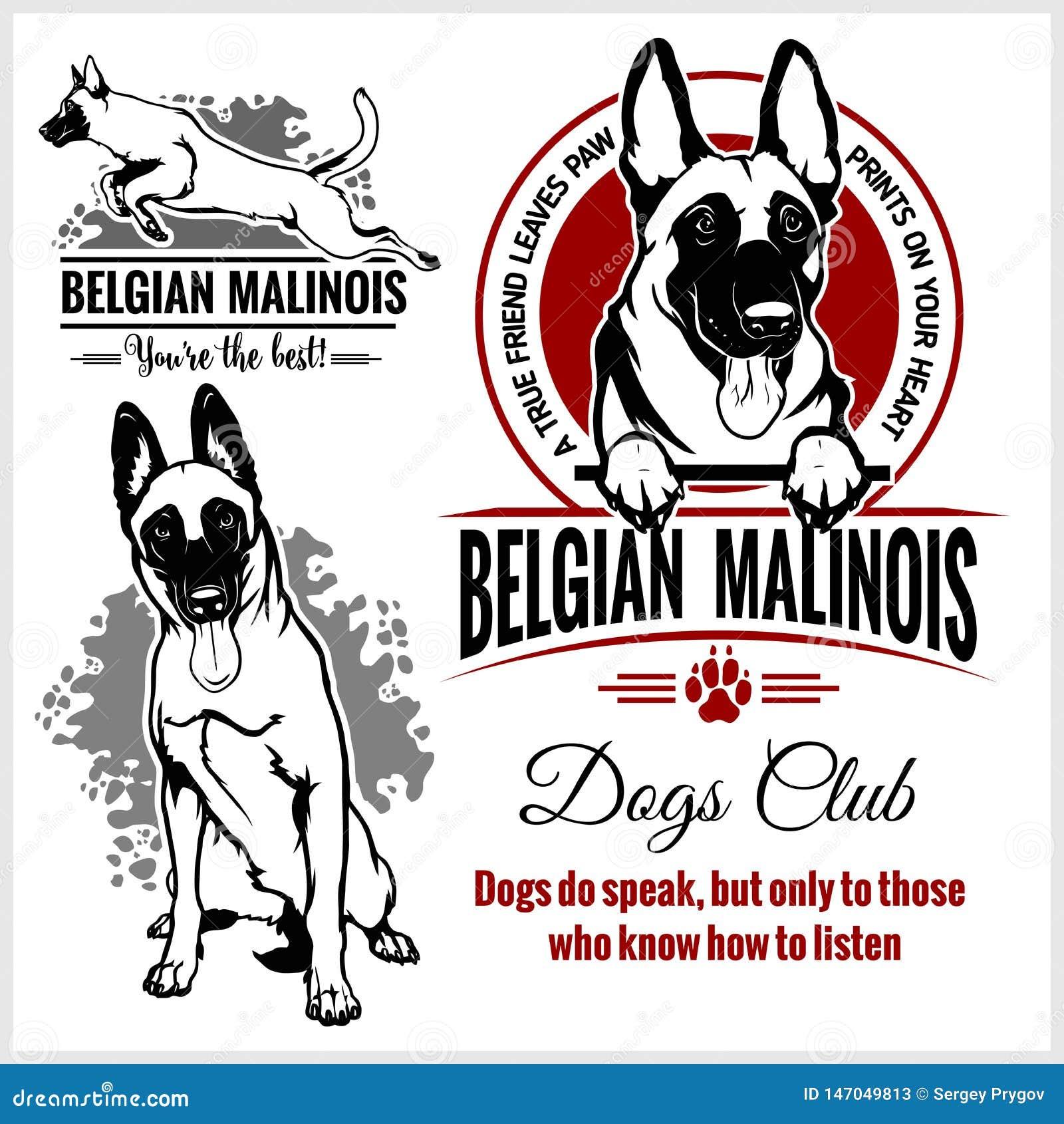 Malinois belgare Malinois, belgisk herde Dog - vektorupps?ttning f?r t-skjorta, logo- och mallemblem