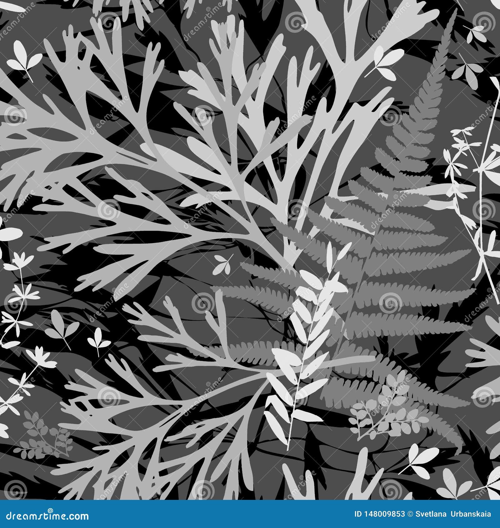 Mall Herbarium med l?sa blommor, filialer, sidor Botanisk bakgrundsmonokrom