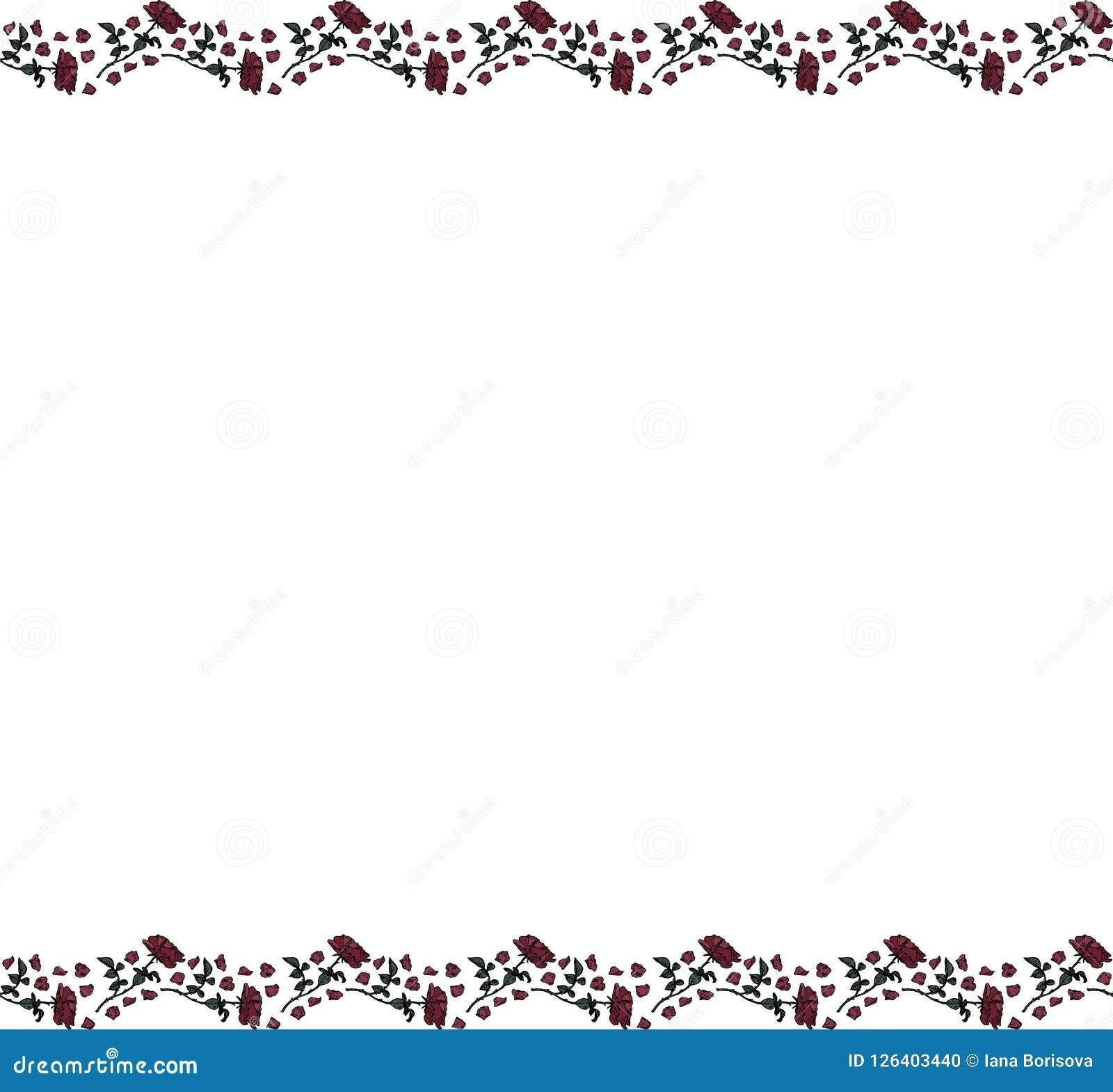 Mall med en vit bakgrund och två remsor av rosor och kronblad överst och botten vektor