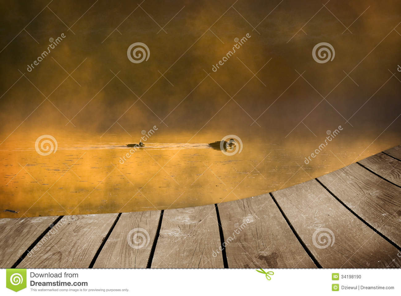 a483c3534 Mallard Duck And Baby And Empty Wooden Deck Table. Stock Photo ...