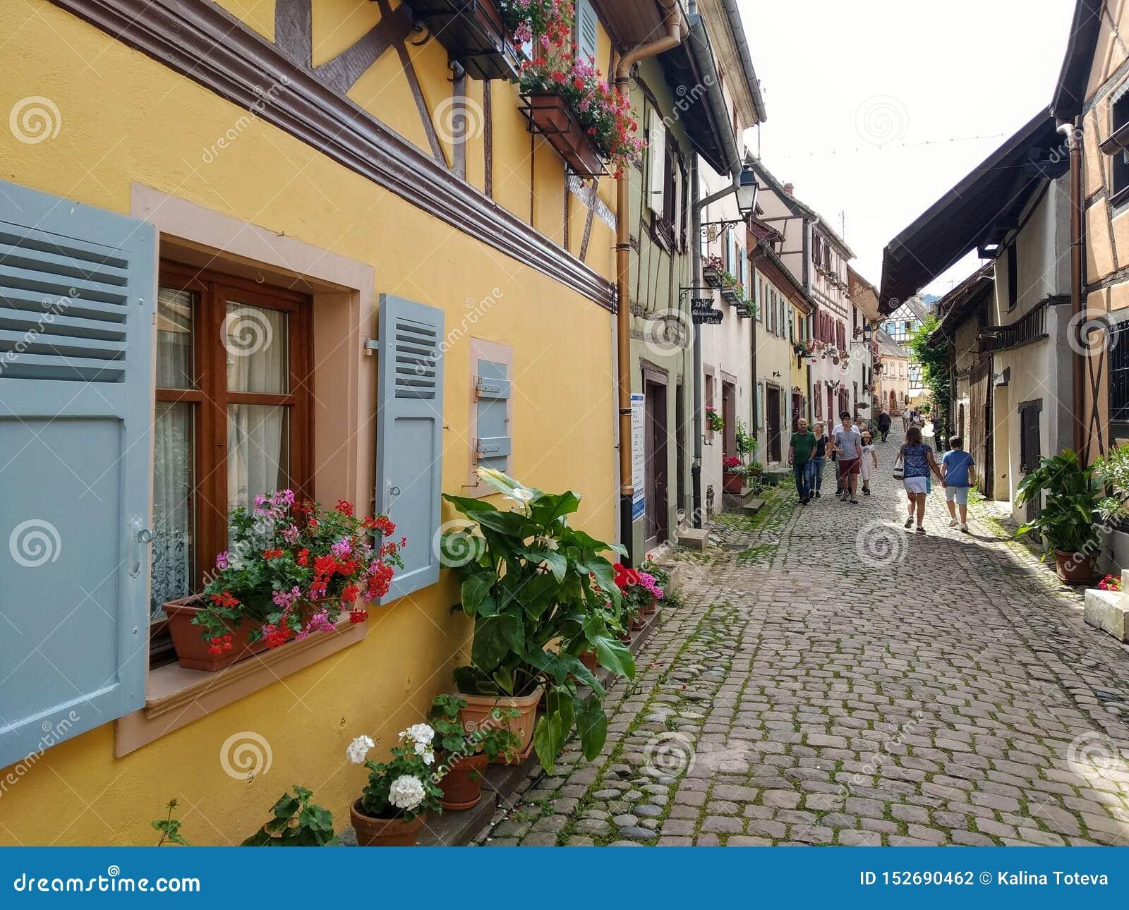 Malownicze aleje Eguisheim, tipical starzy domy w rhenish stylu, dekorującym z kwiatami Francja