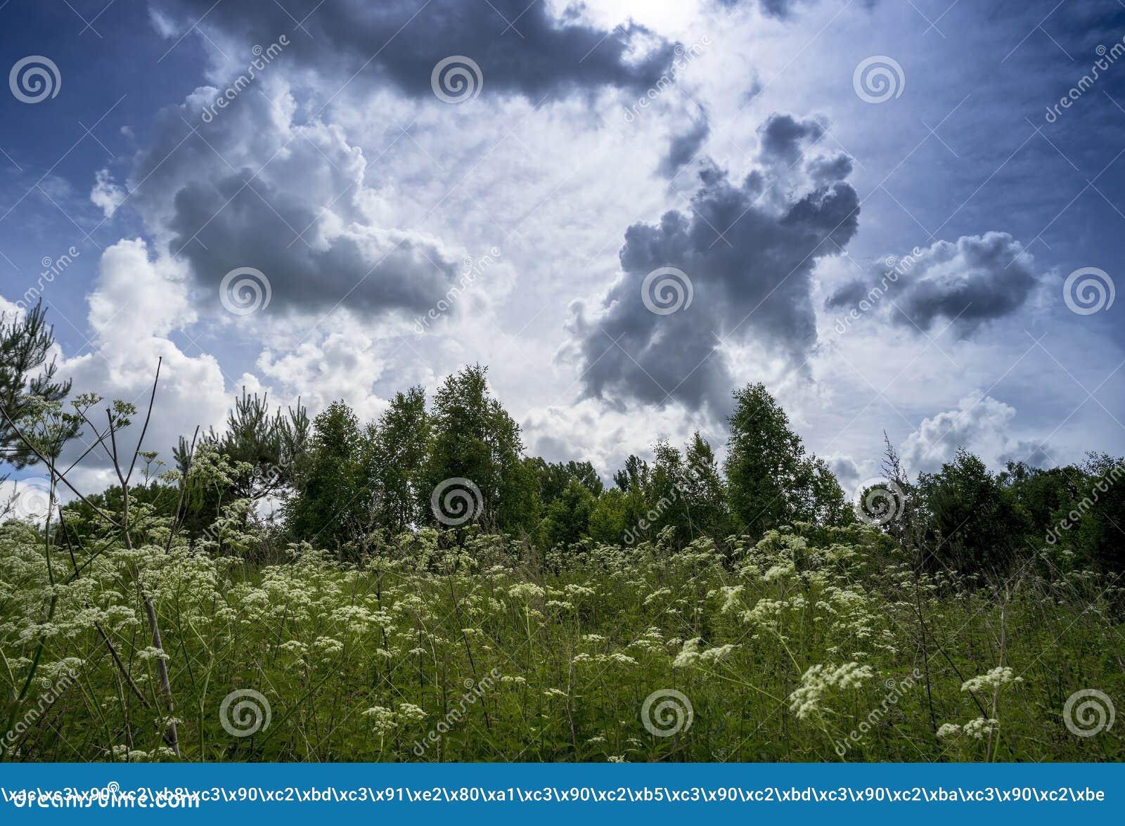 Malownicze chmury w niebie