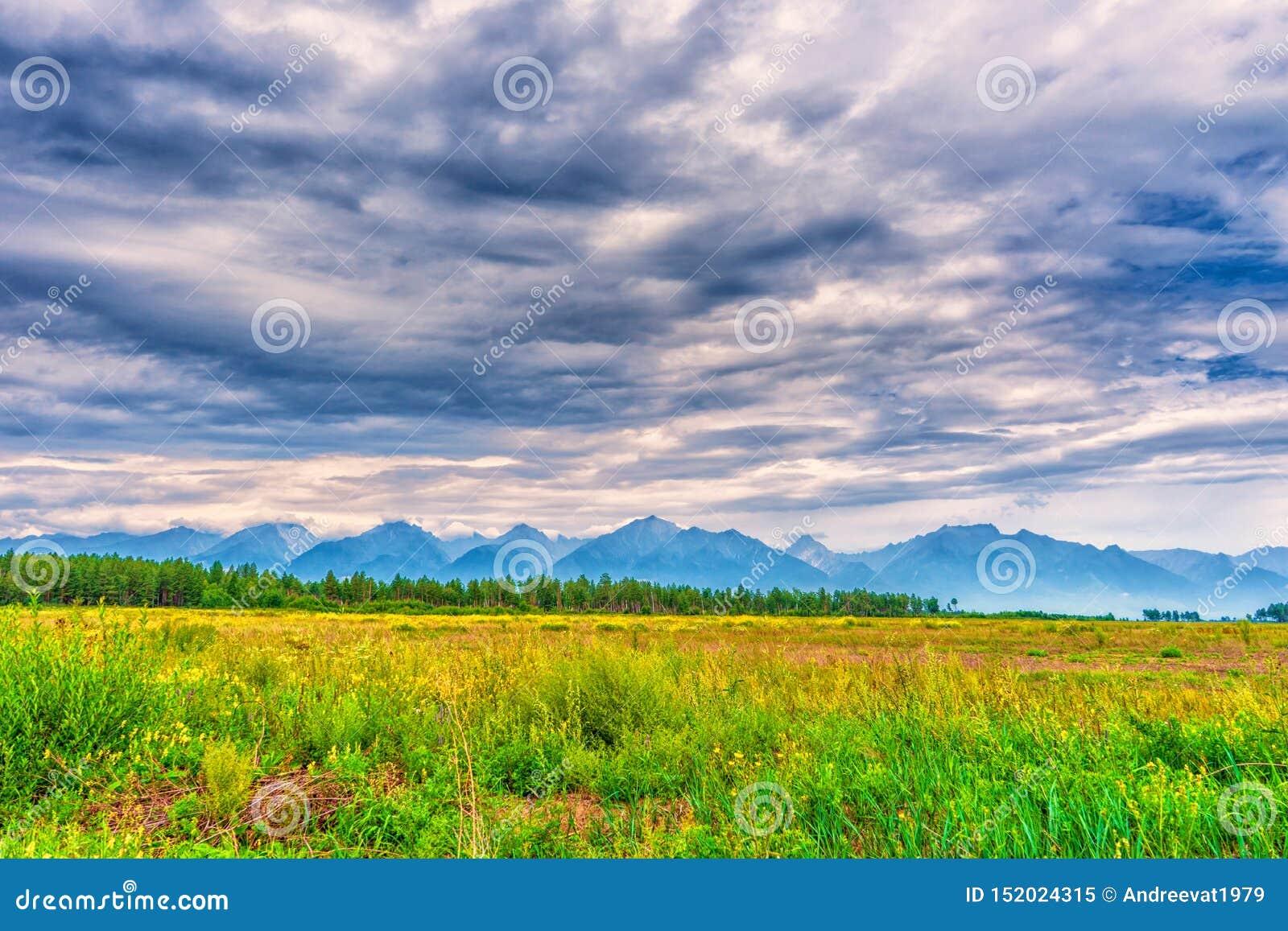 Malowniczy lato krajobraz pasmo górskie z szczytami, doliną z zieloną trawą, gajem i chmurnym niebem, Naturalny t?o z